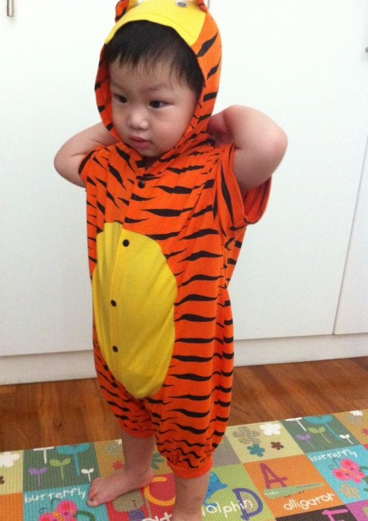 gar tiger