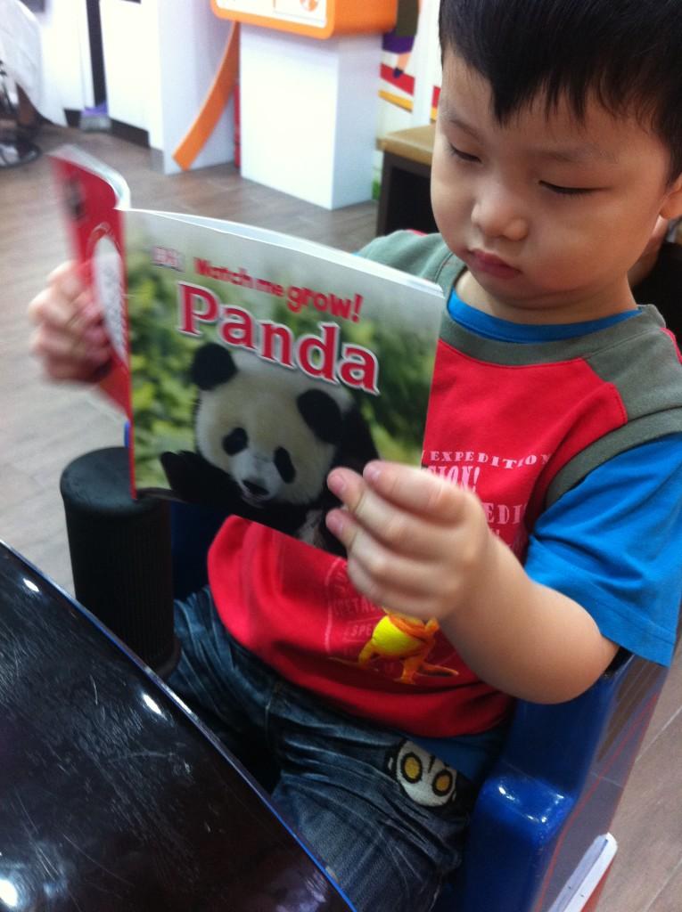 gar reading panda
